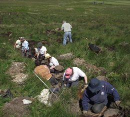 Excavating the furrows to test the site