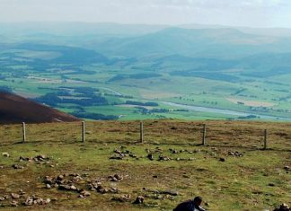 View from Tinto Hill – Cairn