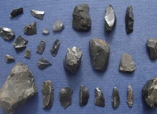 Various pitchstone tools