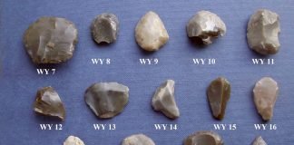 Lithic examples from Wester Yardhouse